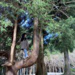 【関西近郊・三重県】かぶとの森テラス/大自然満喫♩山の中で癒しキャンプ